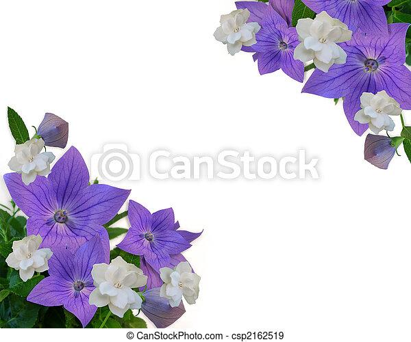 Floral Border Purple white gardenias - csp2162519