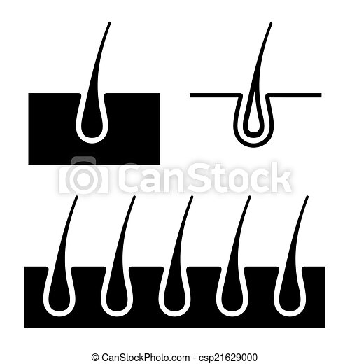 hair follicle diagram clip art vector clipart of hair follicle icons set. vector - simple ...