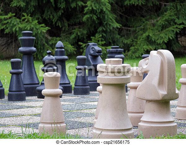 Im genes de ajedrez jard n vida tama o ajedrez en el jard n csp21656175 buscar stock de for Ajedrea de jardin