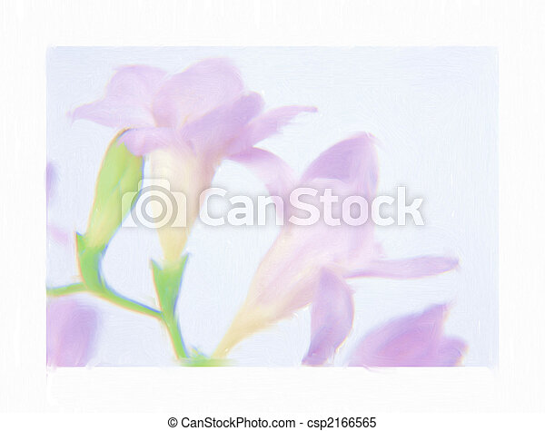 freesia watercolor - csp2166565
