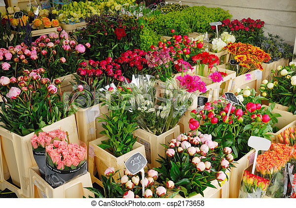 Flowers for sale in Amsterdam The Netherlands - csp2173658