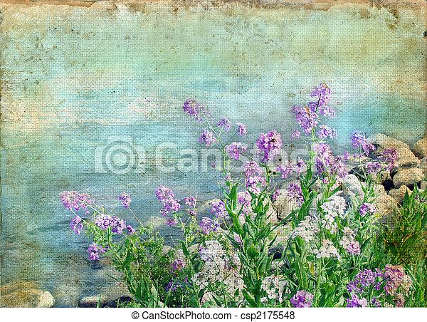 primavera, flores,  grunge, fundo - csp2175548