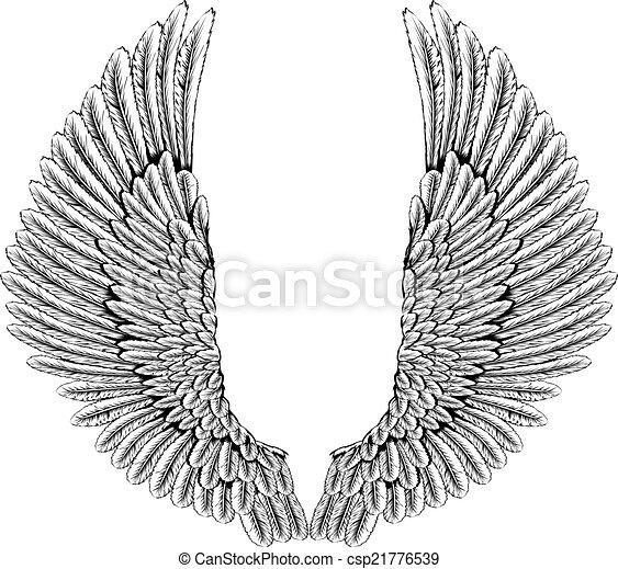 Vecteurs de aigle ou ange ailes une illustration de - Ailes d ange dessin ...