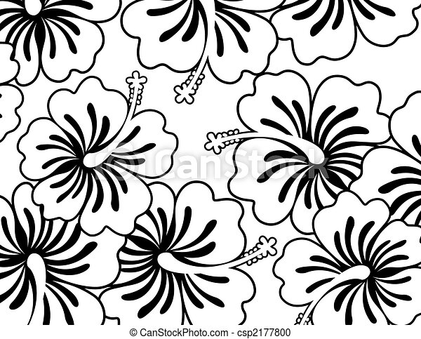 hibiscus wallpaper - csp2177800