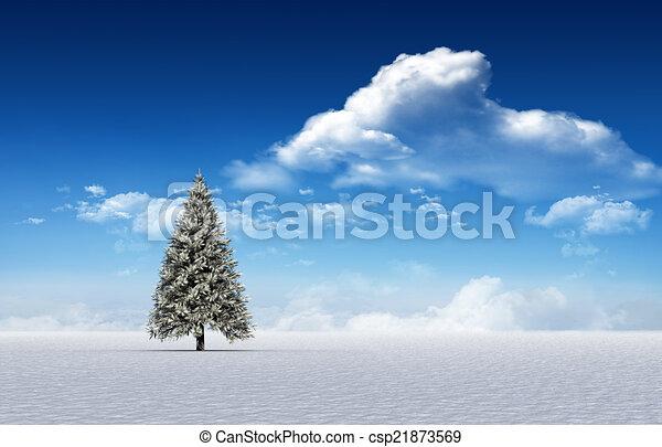 Fir tree in snowy landscape - csp21873569
