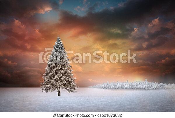 Fir tree in snowy landscape - csp21873632