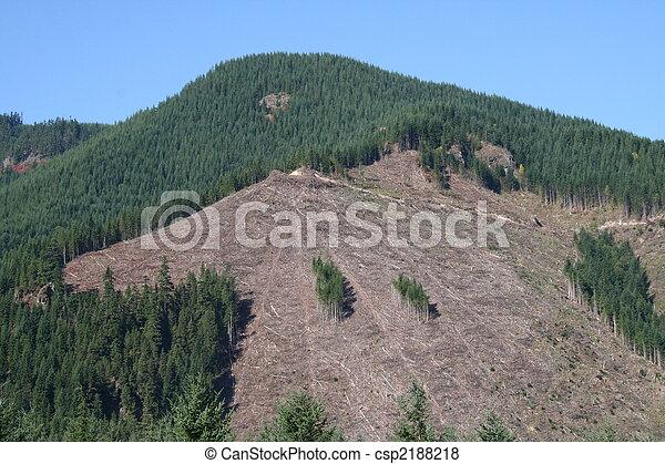 Clearcut Logging - csp2188218