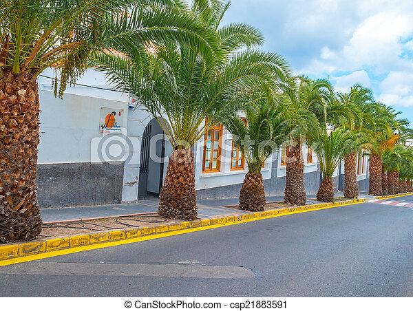 Archivi fotografici di data vibrante palma ananas for Albero di ananas