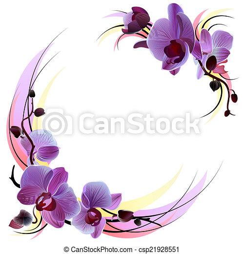 vector, saludo, tarjeta, con, violeta, apacible, Orquídeas, ramas, aislado, en, el, blanco, Plano de fondo