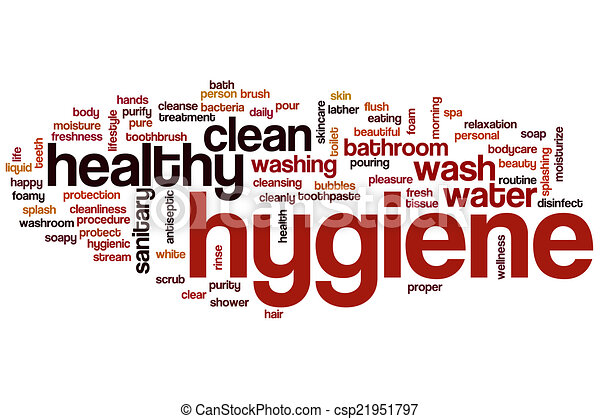 essay on cleanliness and personal hygiene