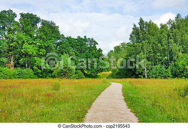 trail in the summer the park, blue sky - csp2195543