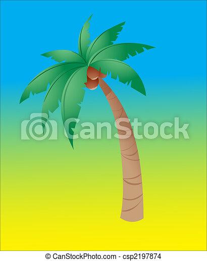 Coconut tree - csp2197874