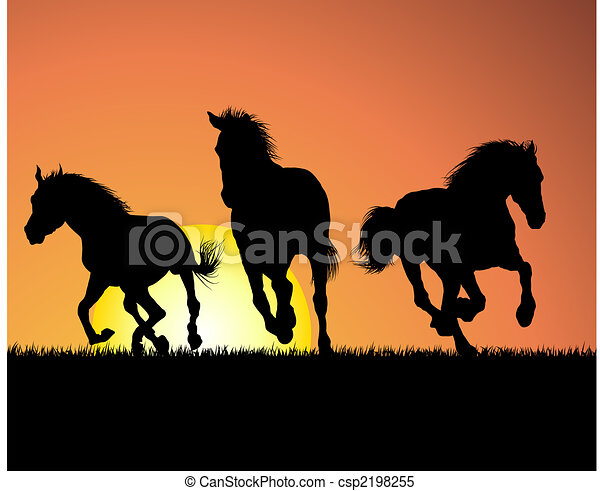 horse on sunset background - csp2198255