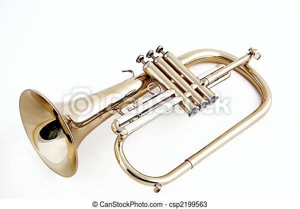 Trumpet flugelhorn Isolated on White - csp2199563