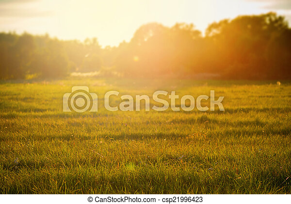 Sunset over rural grass field - csp21996423