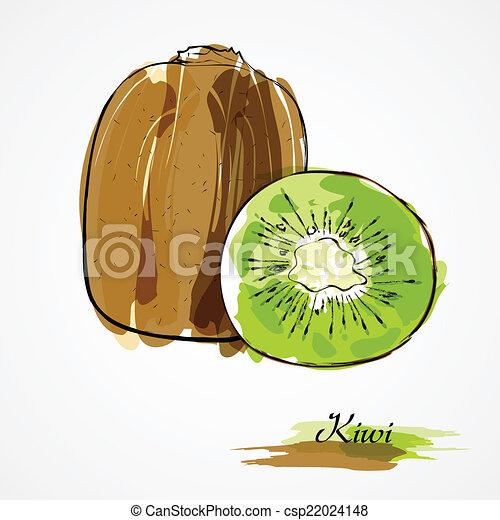 Kiwi Slice Drawing Kiwi Fruit Slice Csp22024148