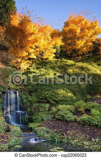 otoño, vibrante, maravilloso, cascada, paisaje - csp22065023