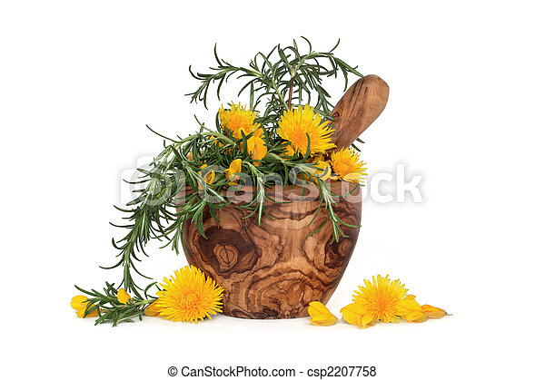Rosemary Herb and Wild Flowers - csp2207758