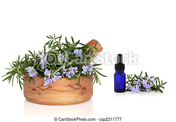 Rosemary Herb and Essence - csp2211777