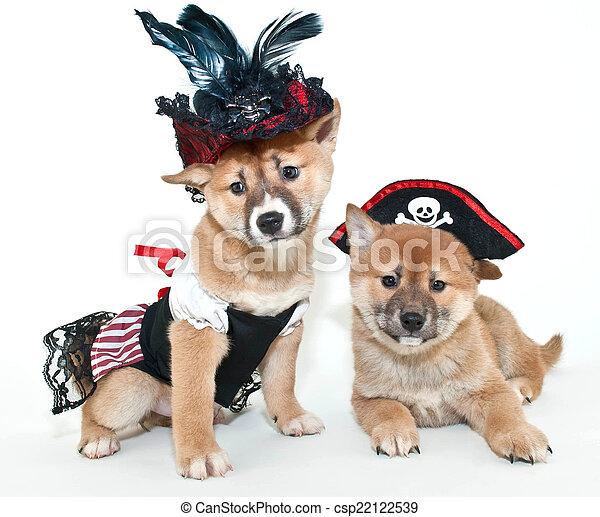 Arrrrrten't We cute?! - csp22122539