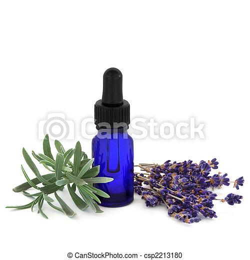 Lavender Herb Essence - csp2213180