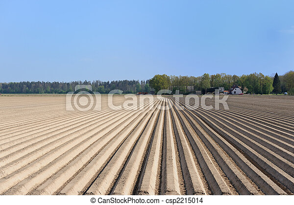 espargos, agricultura - csp2215014