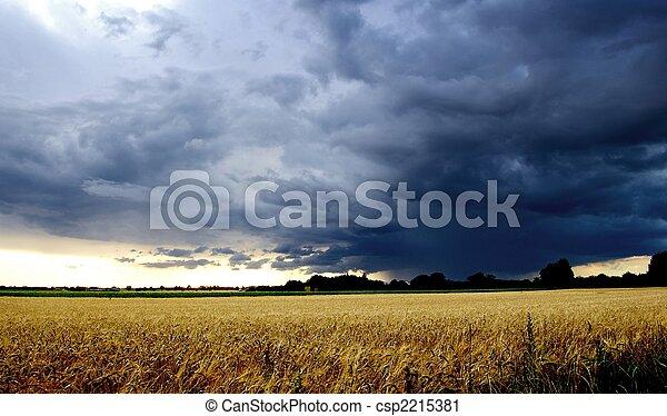 Thunderstorm - csp2215381