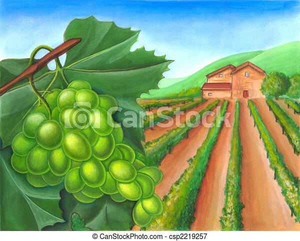 Grape and rural landscape - csp2219257