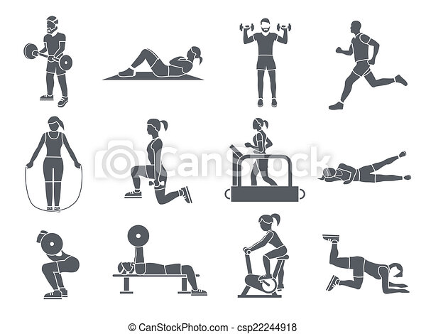 gimnasio sport line: