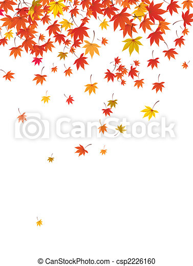 falling maple leaves - csp2226160