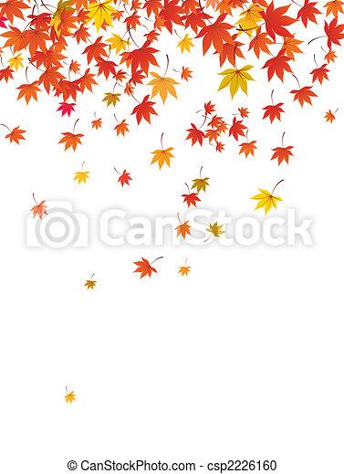 falling maple leaves - csp2226160