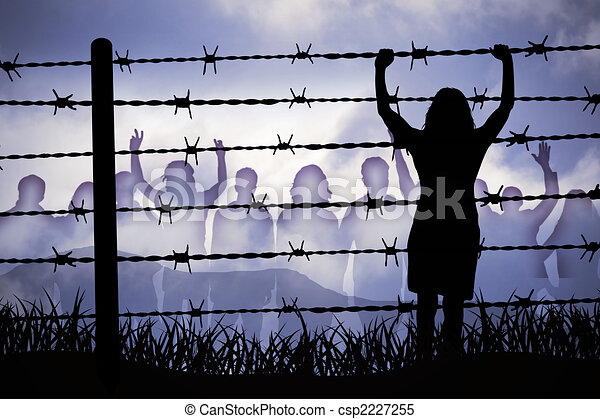 Barbed wire - csp2227255