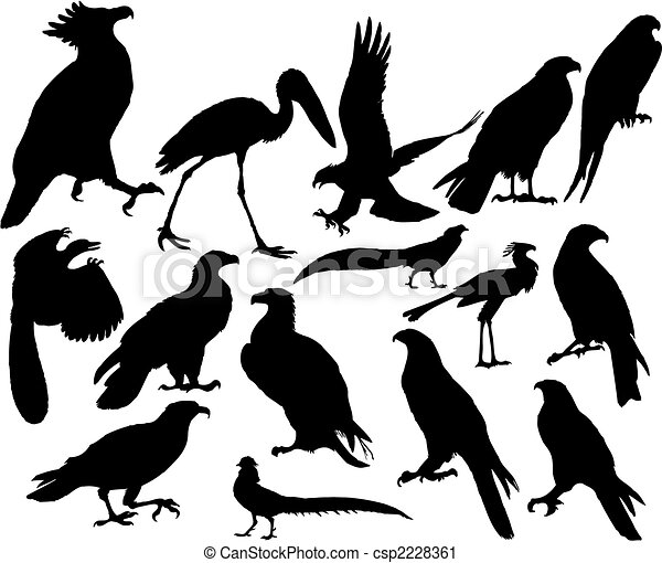 vector birds - csp2228361
