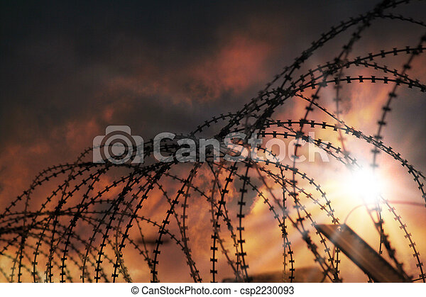 barbed wire - csp2230093
