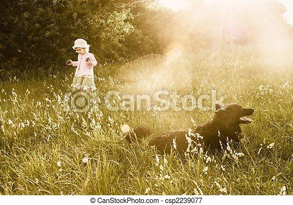Childhood dreams - csp2239077