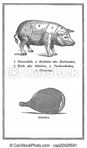 Food, old pork chart with pig and ham - csp22429591