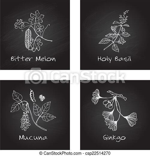 Handdrawn set - Ayurvedic Herbs - csp22514270