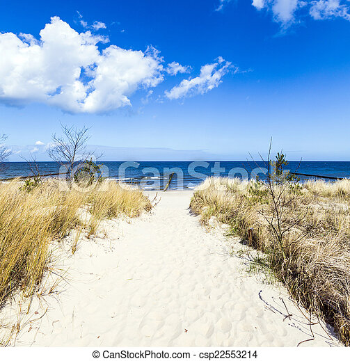 levee with sandy path to beach at baltic sea - csp22553214