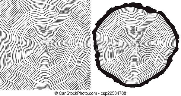 Tree Ring Drawings Vector Tree Rings