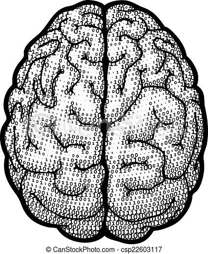 brain line drawing top - photo #21