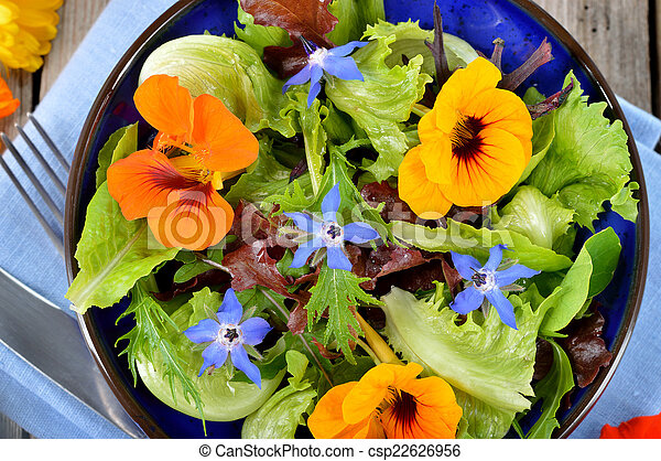 images de fleurs borage comestible salade capucine fresh t csp22626956. Black Bedroom Furniture Sets. Home Design Ideas