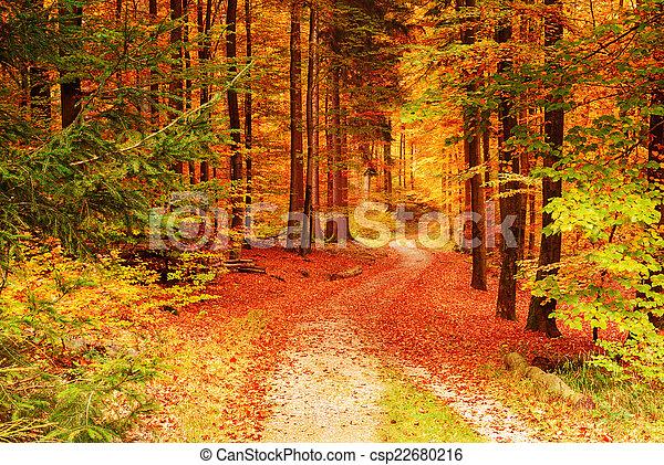 otoño - csp22680216