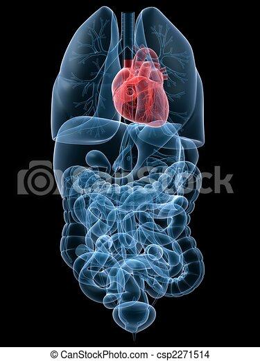 highlighted heart - csp2271514