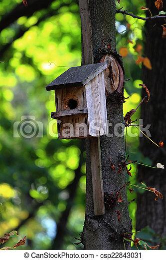 Birdhouse  - csp22843031