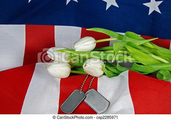 Military Tribute - csp2285971
