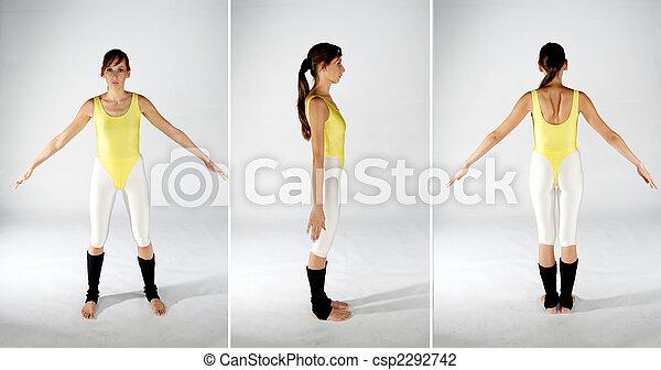 Body Style Sheet - csp2292742