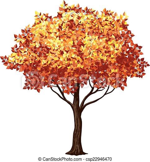 Illustrations vectoris es de arbre automne arbre dans automne isol sur blanc - Arbre d automne dessin ...