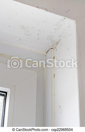 Photographies de mur humide moule fen tre cadre t t for Mur interieur humide