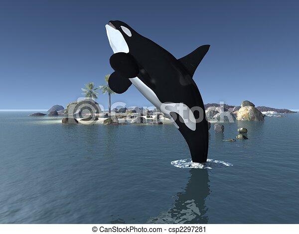 Orca - Killer Whale - csp2297281