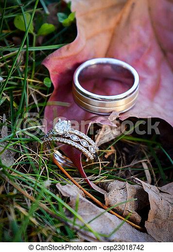 Wedding rings on a leaf